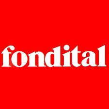 FONDITAL Delfis Condensing AST 14 C 240/01. Errores