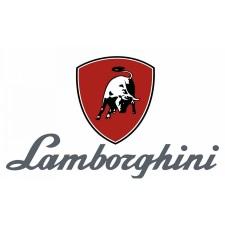 LAMBORGHINI Taura 24 MC W TOP. Errores